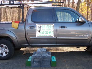 Animal removal service contracts Connecticut